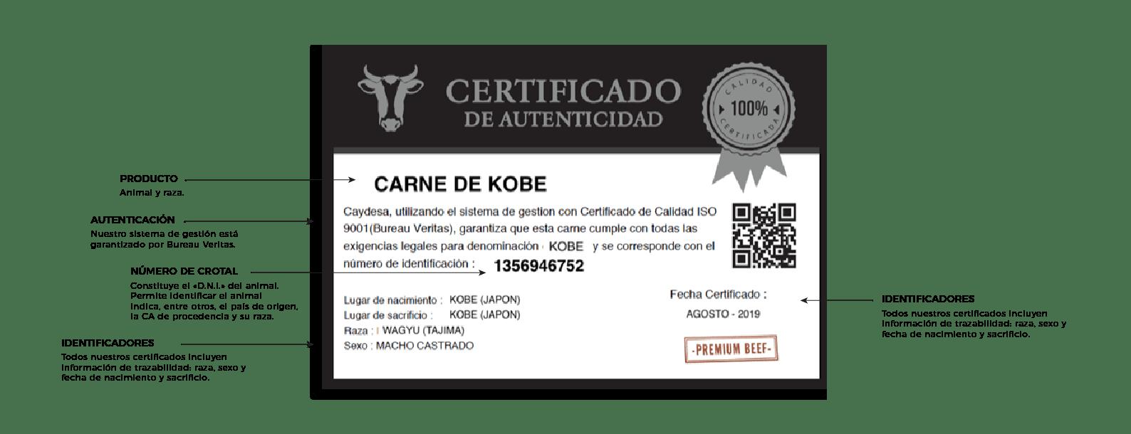 carne de kobe certificada